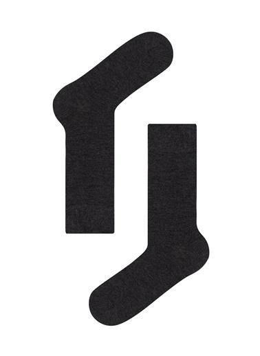 Penti Erkek  Bambu Line 2Li Soket Çorap Renkli